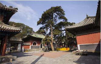 北京法源寺图片
